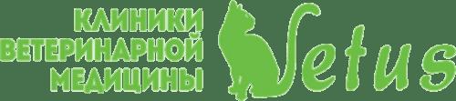 Туляремия у кошек
