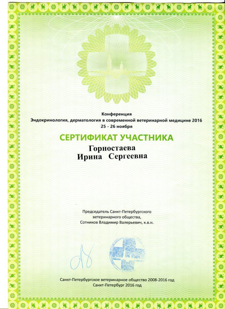 2016 дерм